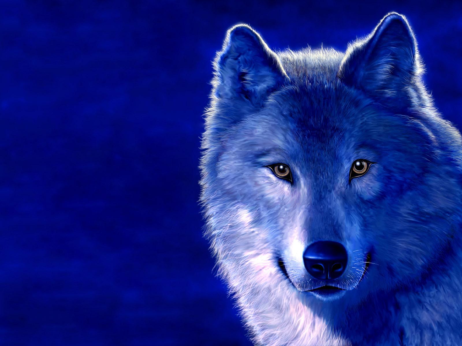 фотообои волки: