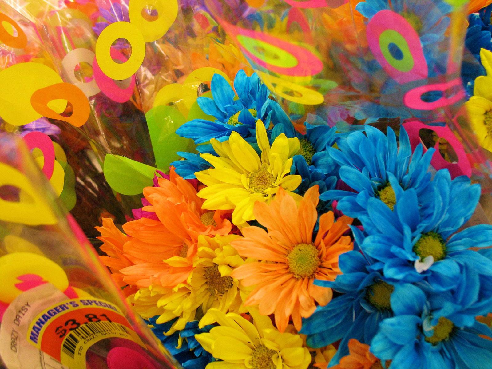 Поздравление с разными цветами 89