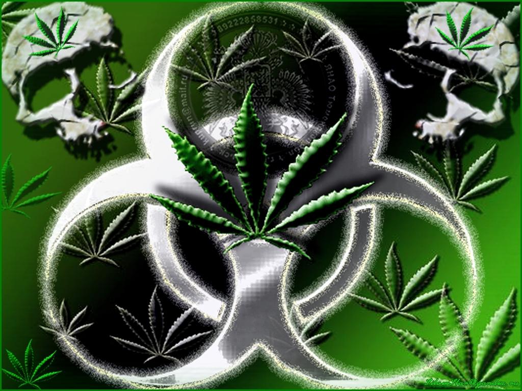 Скачать обои на рабочий стол марихуана 6