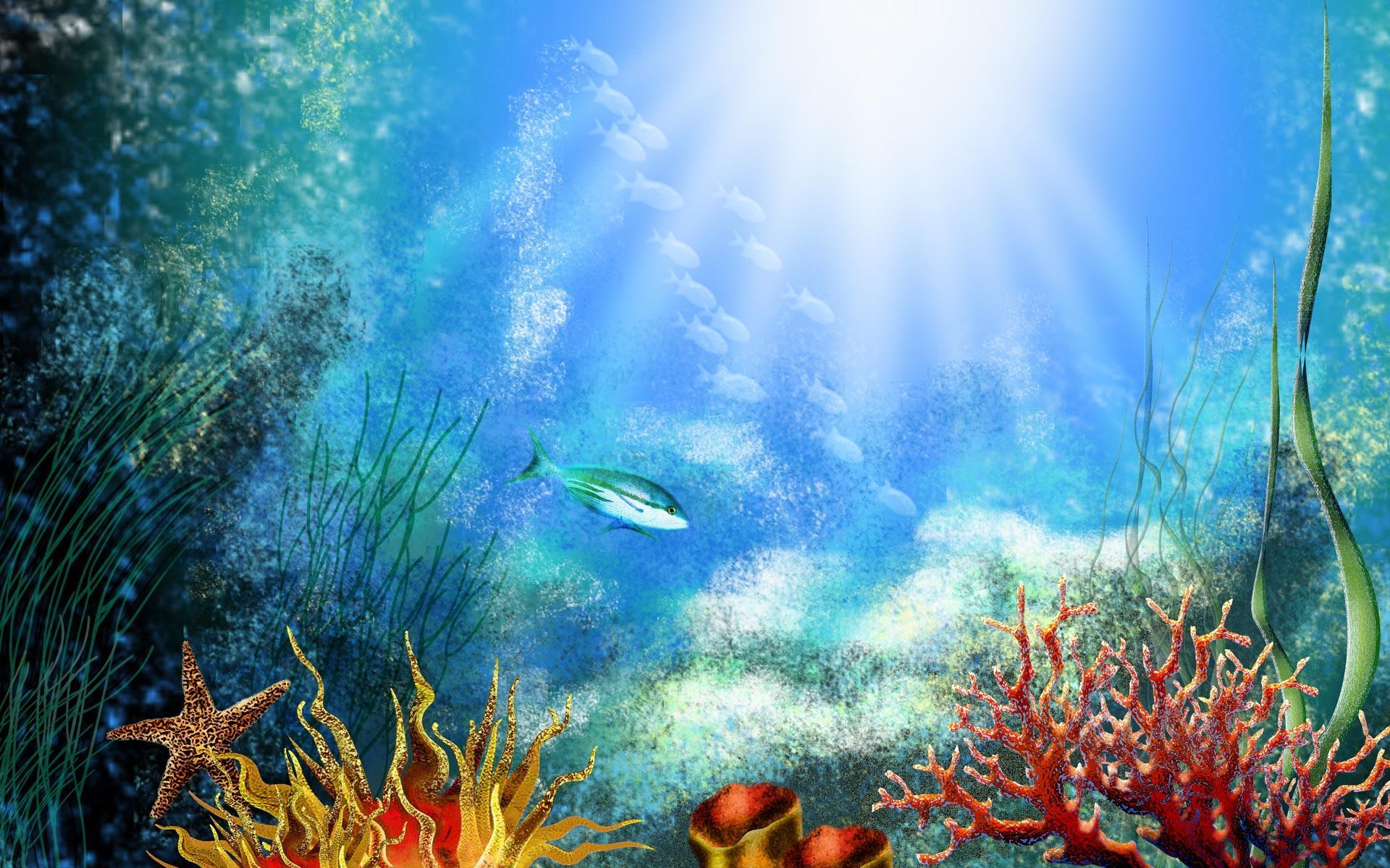 Яркие краски подводного мира  № 618921 загрузить