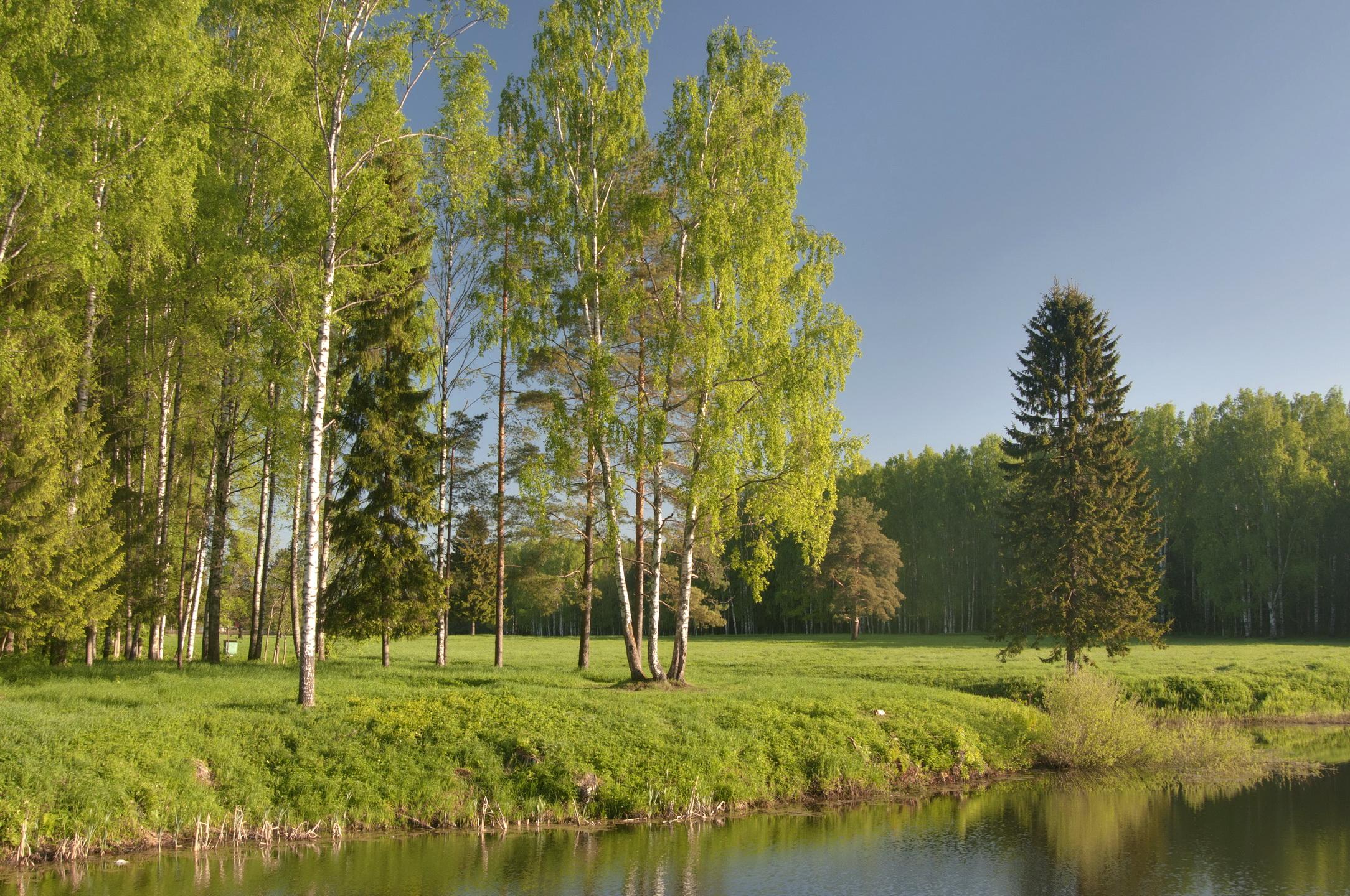 русская природа обои на рабочий стол хорошего качества № 246591 бесплатно