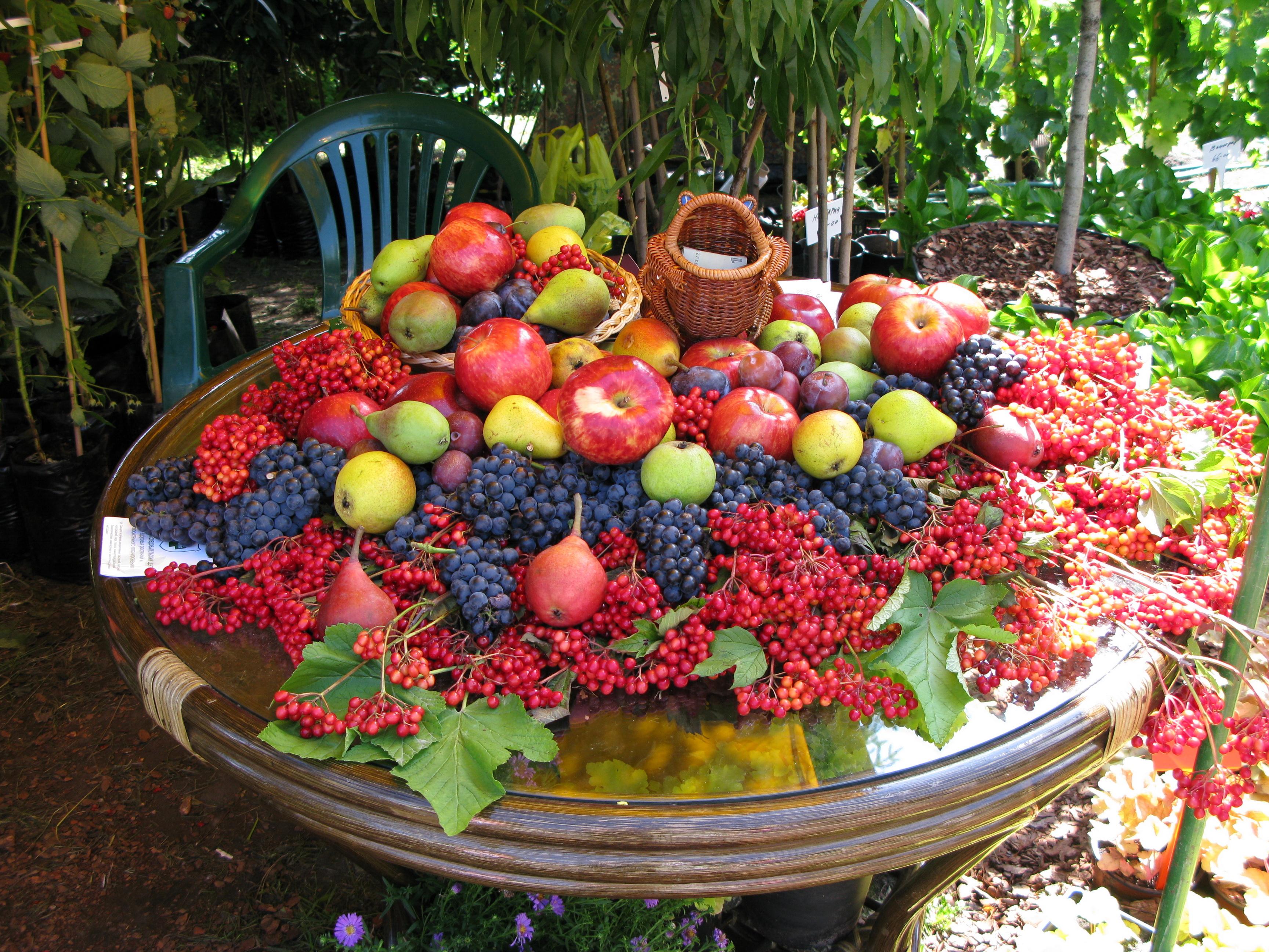 Поздравление в стиле фруктовый сад