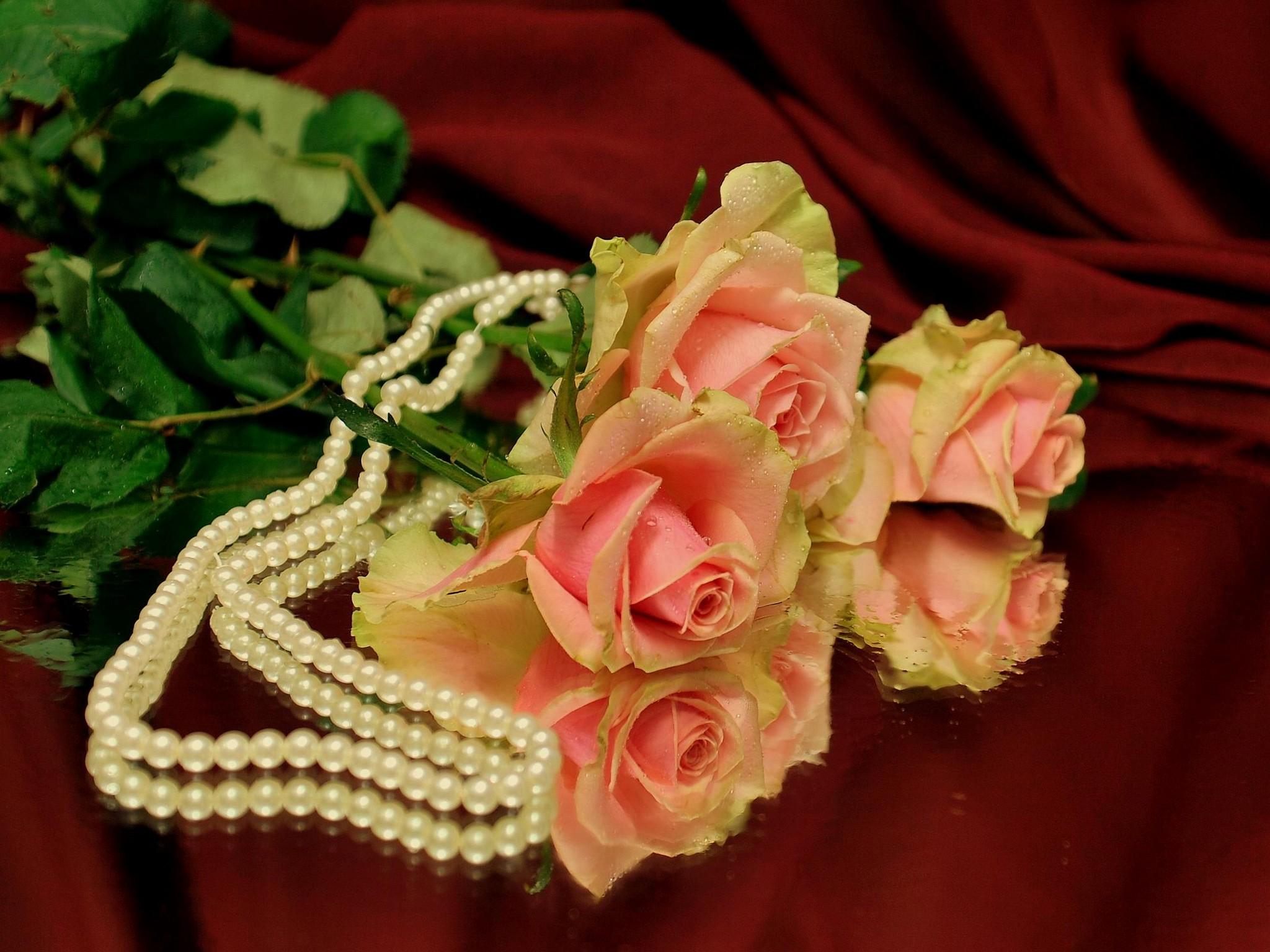 Поздравляем с Днем Рождения Анжелику Николаевну! 183560-foxixol