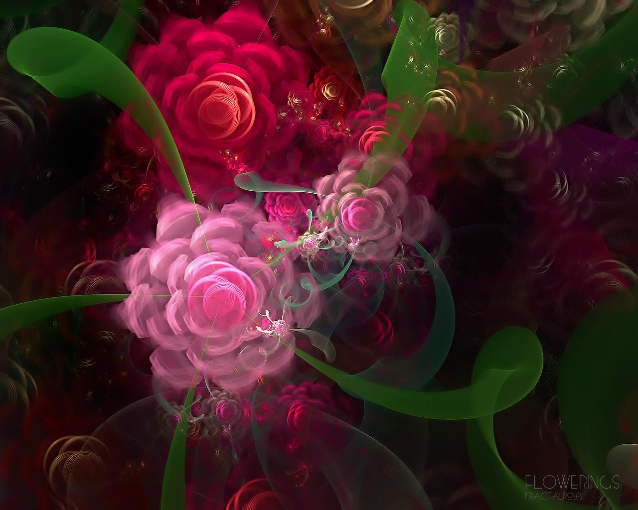 графика космос цветы роза graphics space flowers rose  № 927180 загрузить