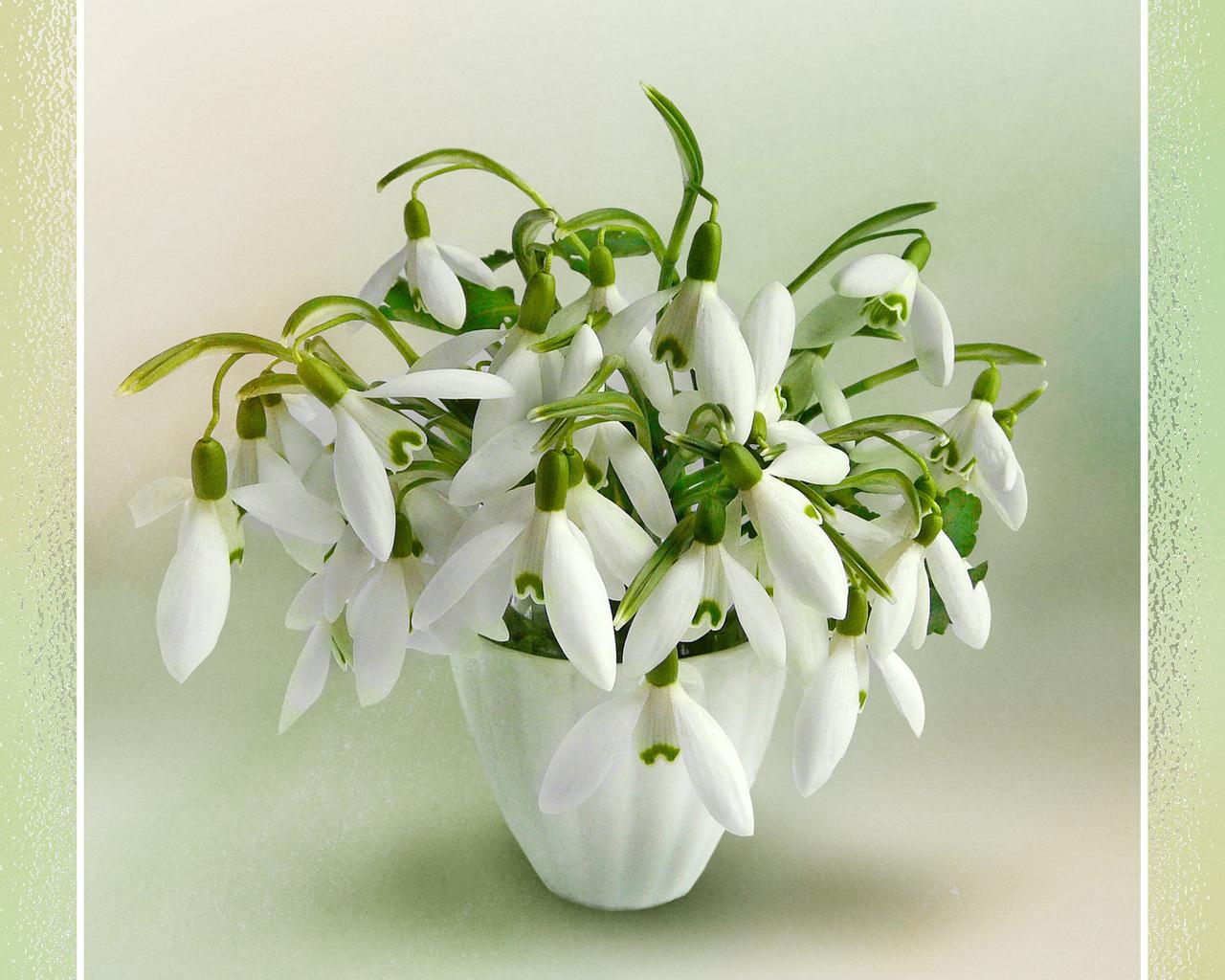 Открытки с весенним цветами