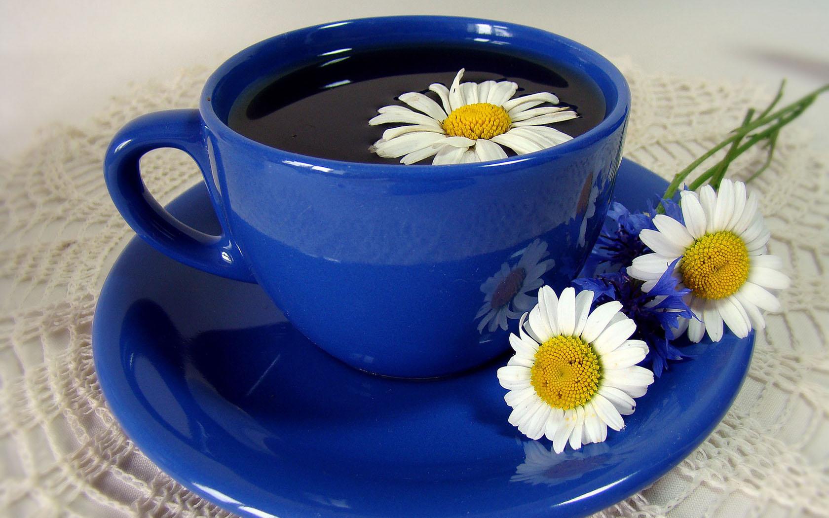 можно пить чай с ромашки фотоаппарат кратным увеличением