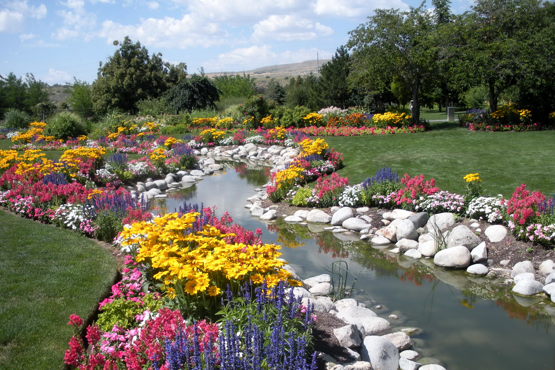 Реки из цветов фото
