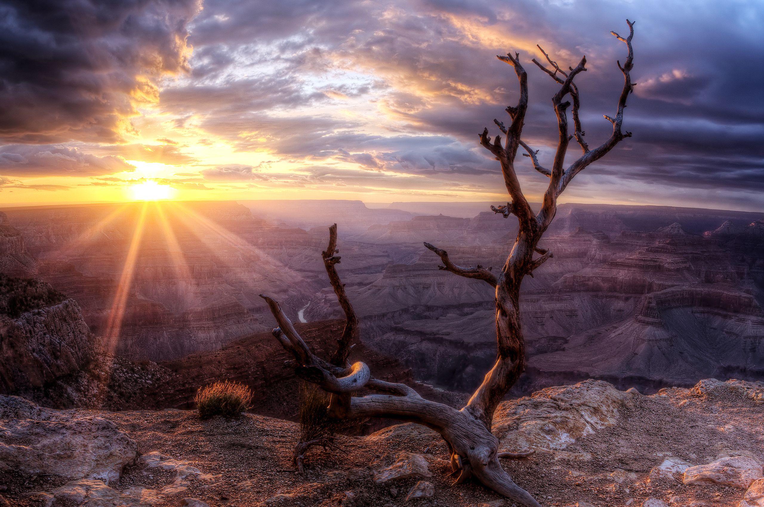 горы деревья солнце отражение русло без смс