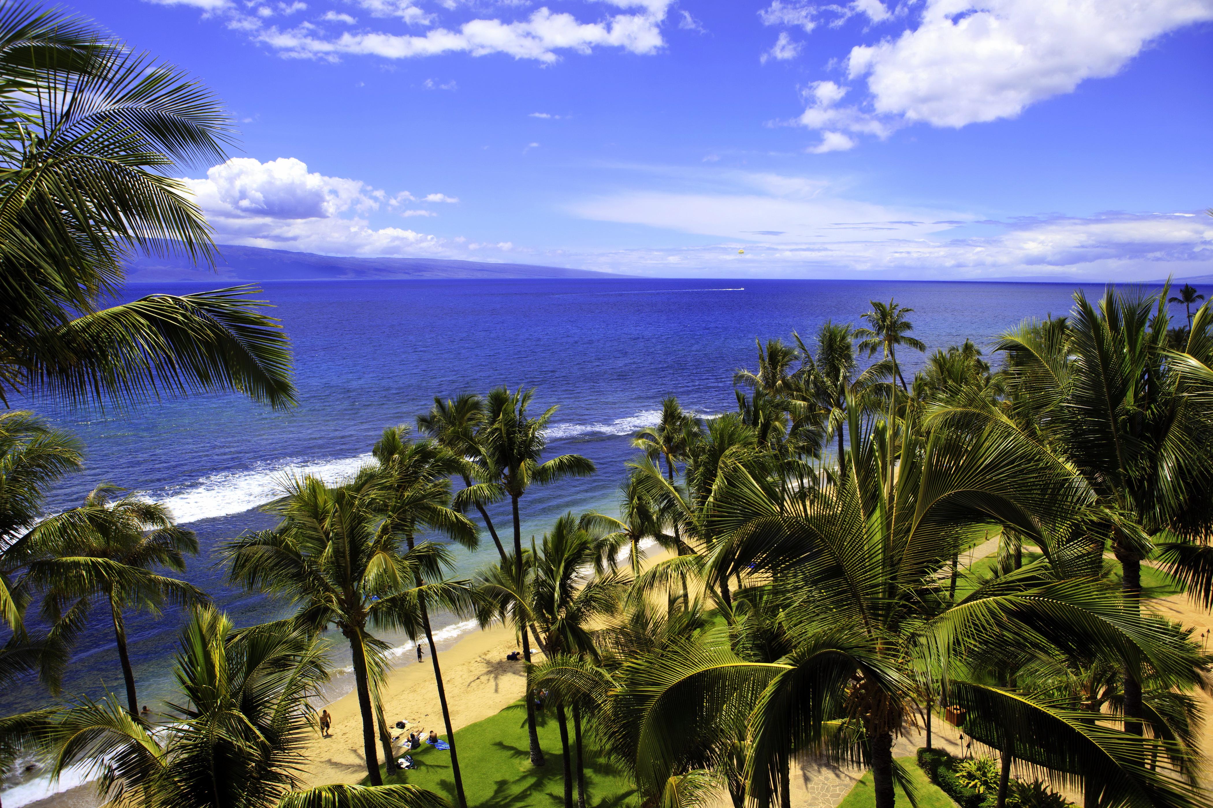 Kona Coast, Big Island, Hawaii скачать