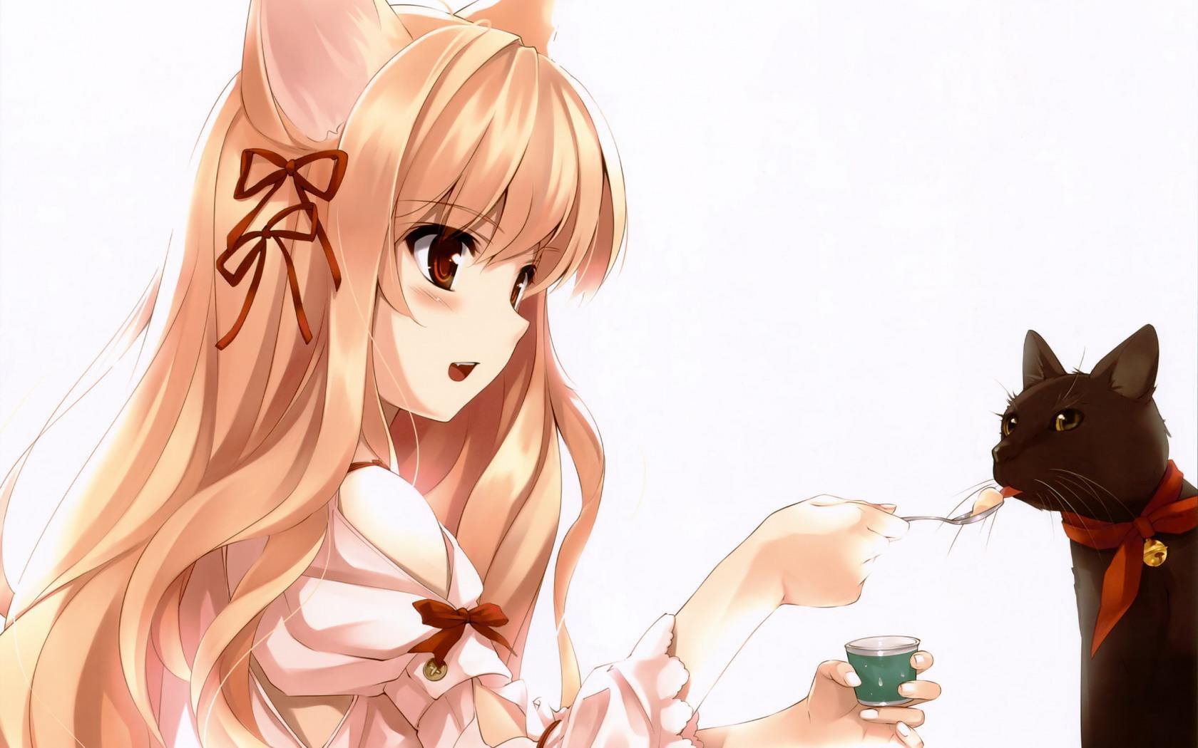 Картинки кошки аниме животные
