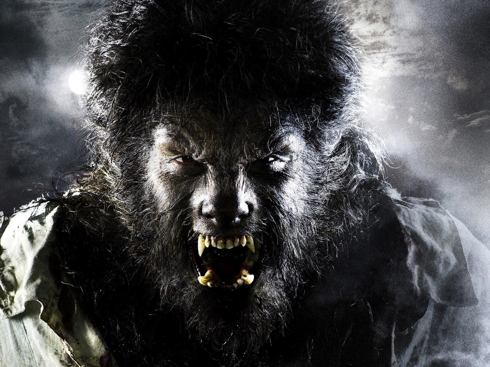 Фото Человек-волк кино Фильмы