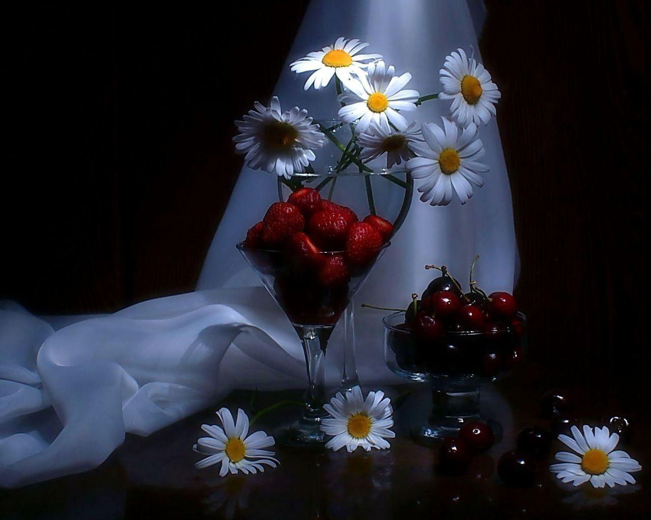 Цветок не любящий свет фото