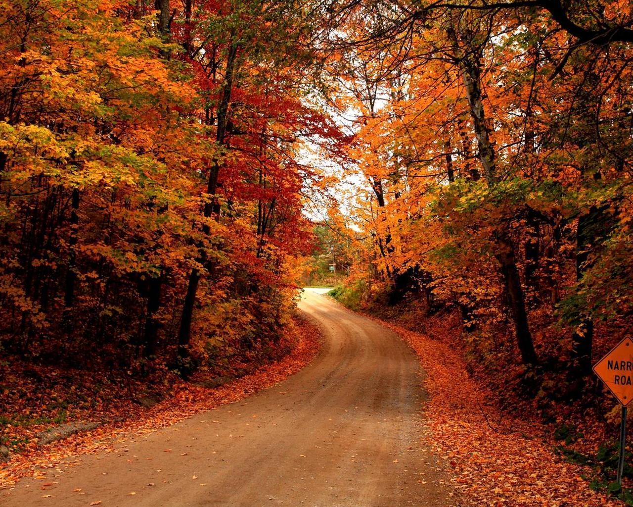 Времена года Осень Дороги - Природа