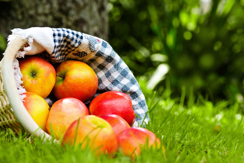 Яблоко в корзинке без смс