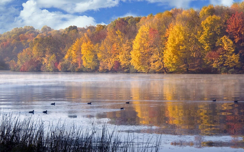 Времена года Осень - Природа