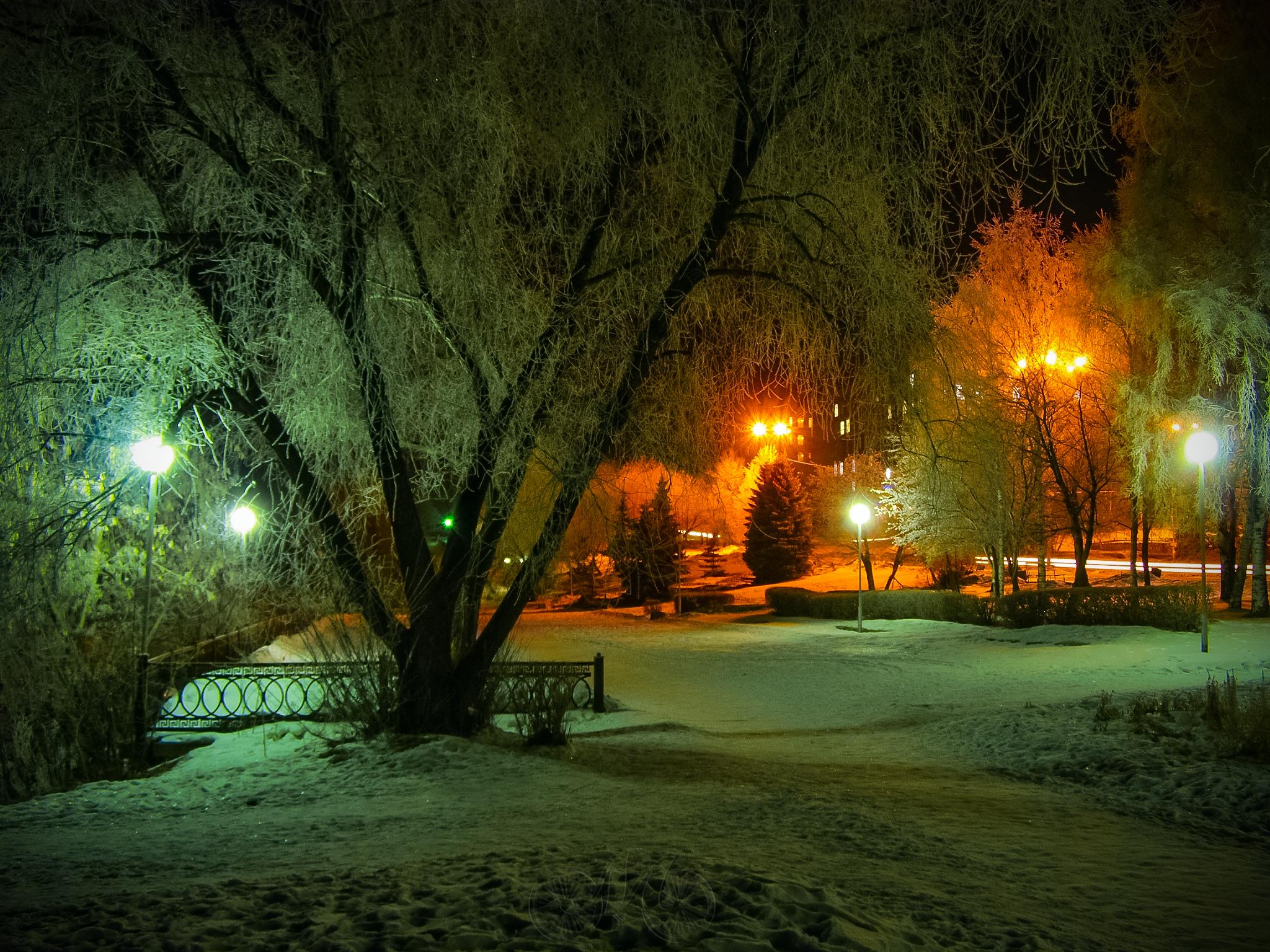 Зимний парк без смс