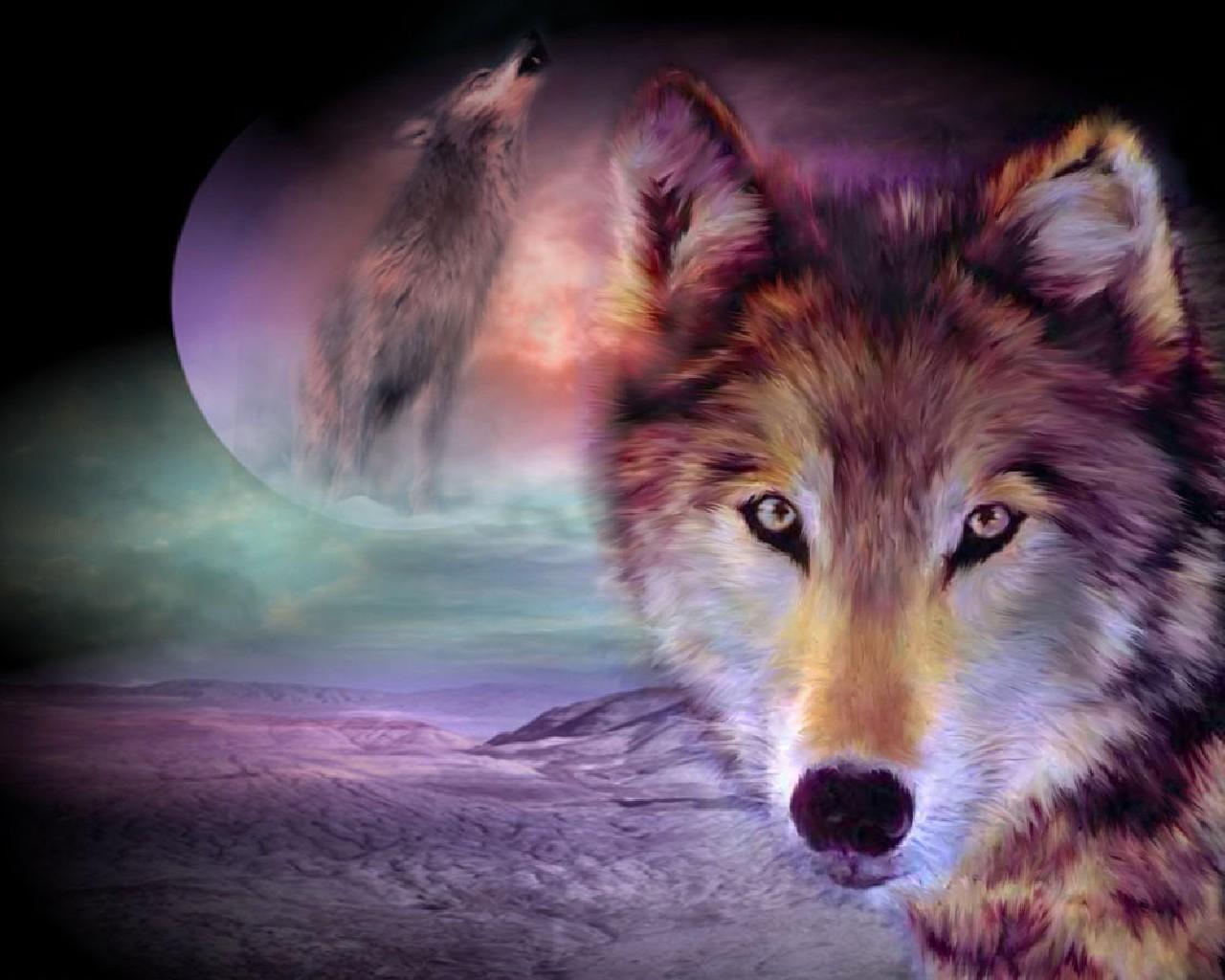 Обои волки. Животные foto 13
