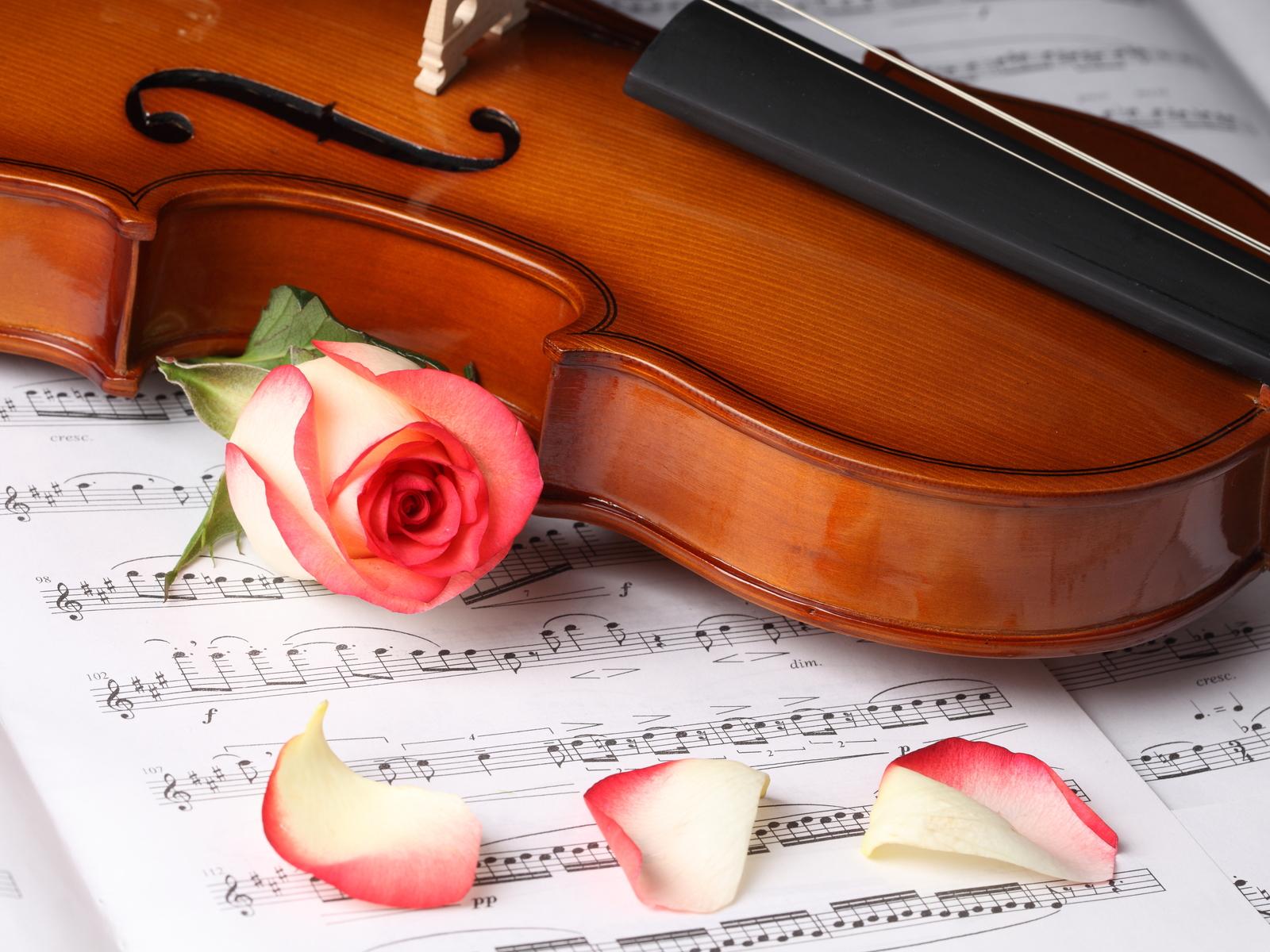 Музыка музыка, искусство, стиль, картинка, обои.