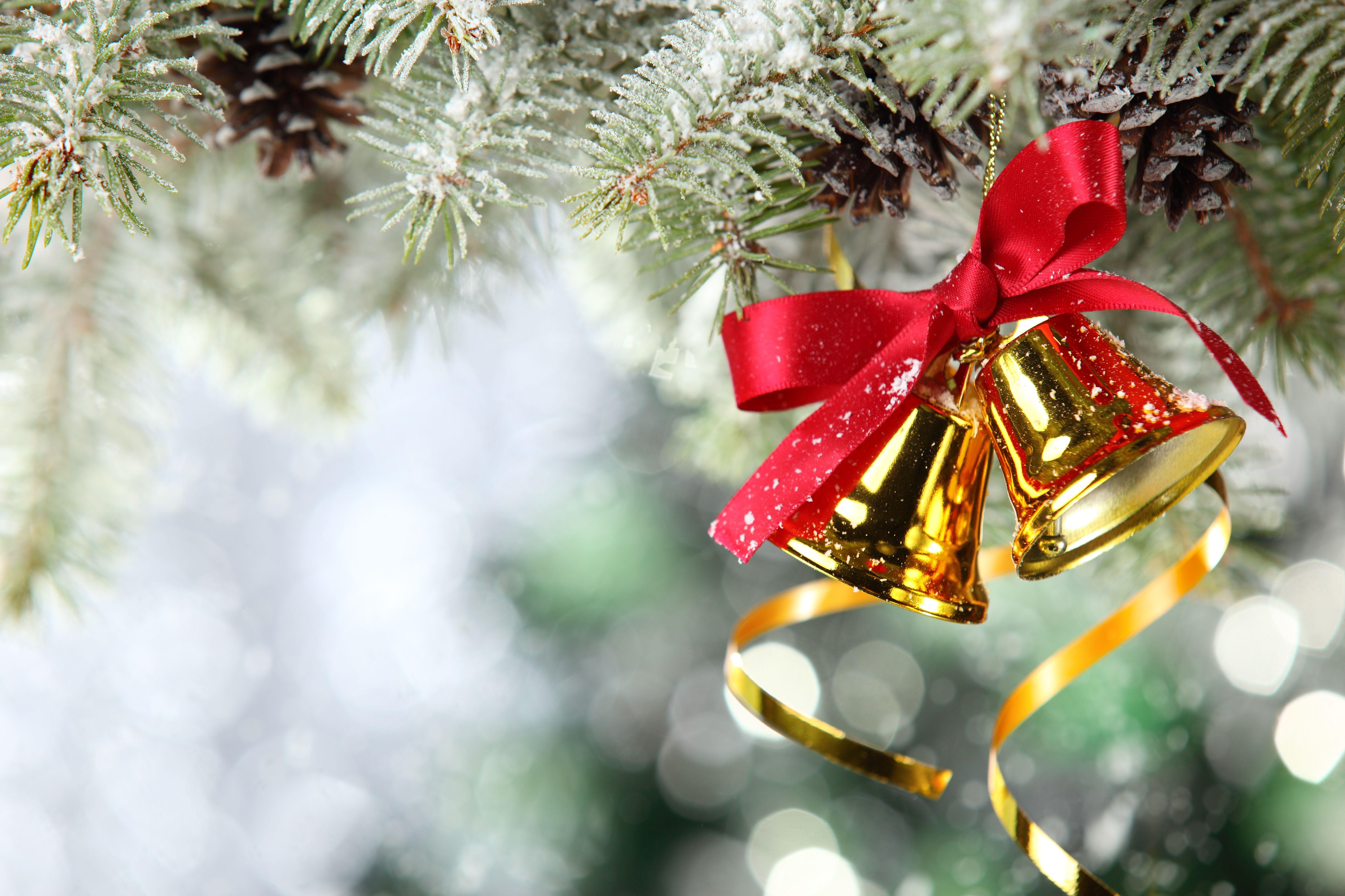 рождество, подарки, снег, ветка скачать