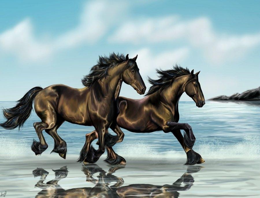 Картинка красивой лошади. Лошадь бежит по полю. Черная лошадь. Белая лошадь. Лошадь с крыльями. Обои на рабочий стол. Лошадь в лесу. Лошадь.
