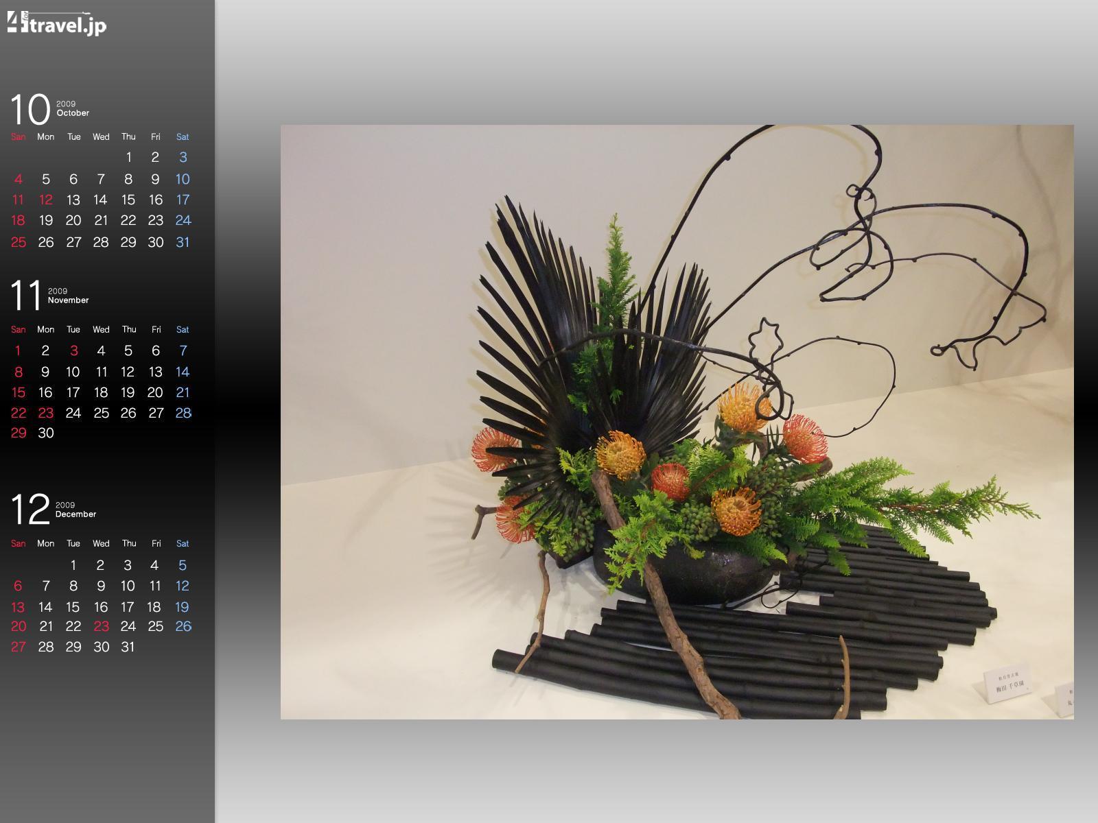 Фотография Цветы Икебана цветок
