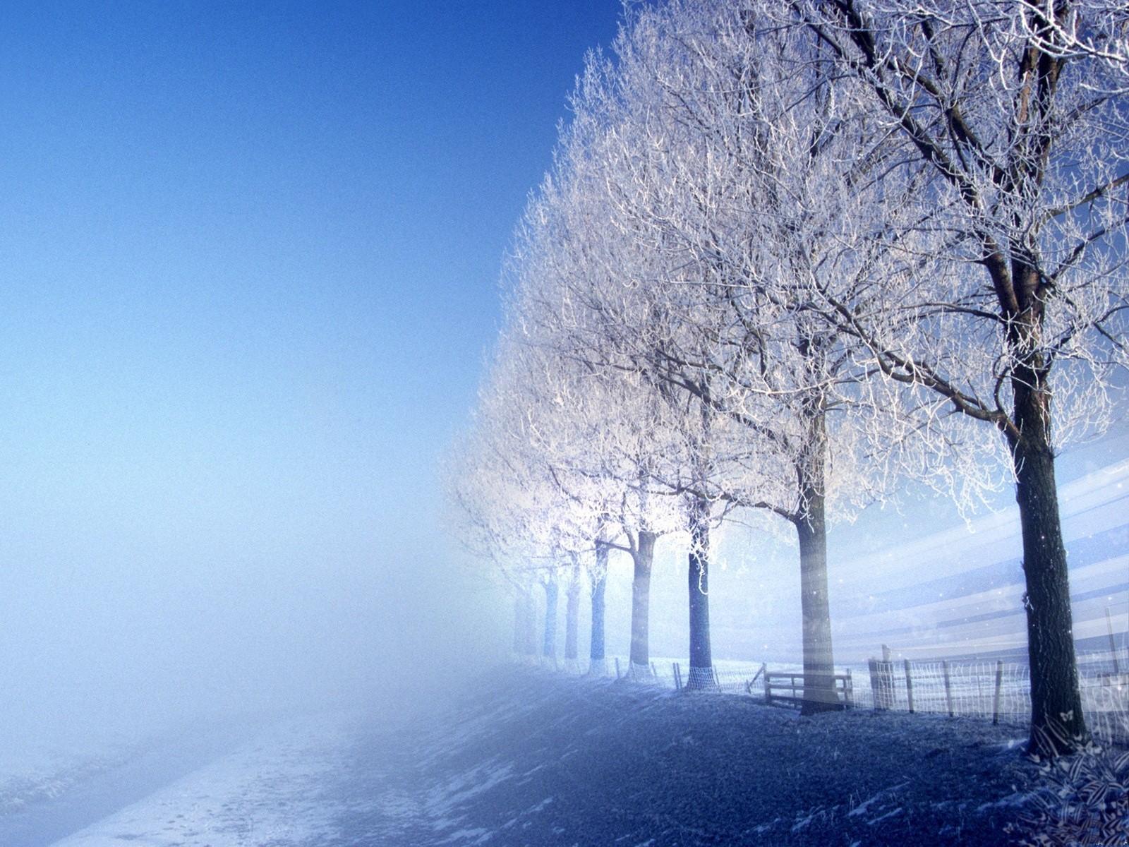 снежные деревья без смс