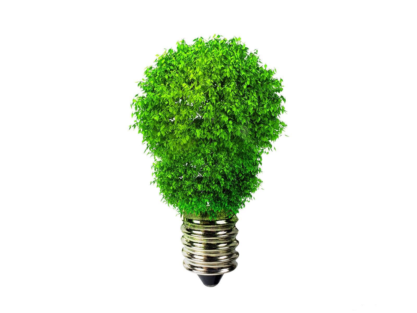 Фотография Лампочка Креатив Растения лампа накаливания креативные оригинальные