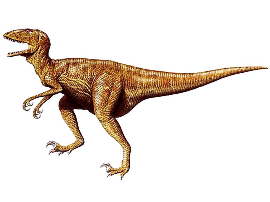динозавры картинки: