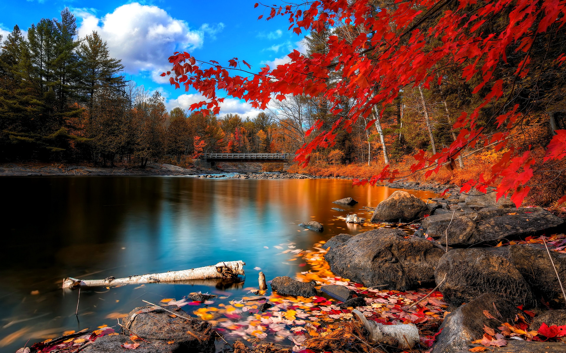 the magnificence of autumn essay