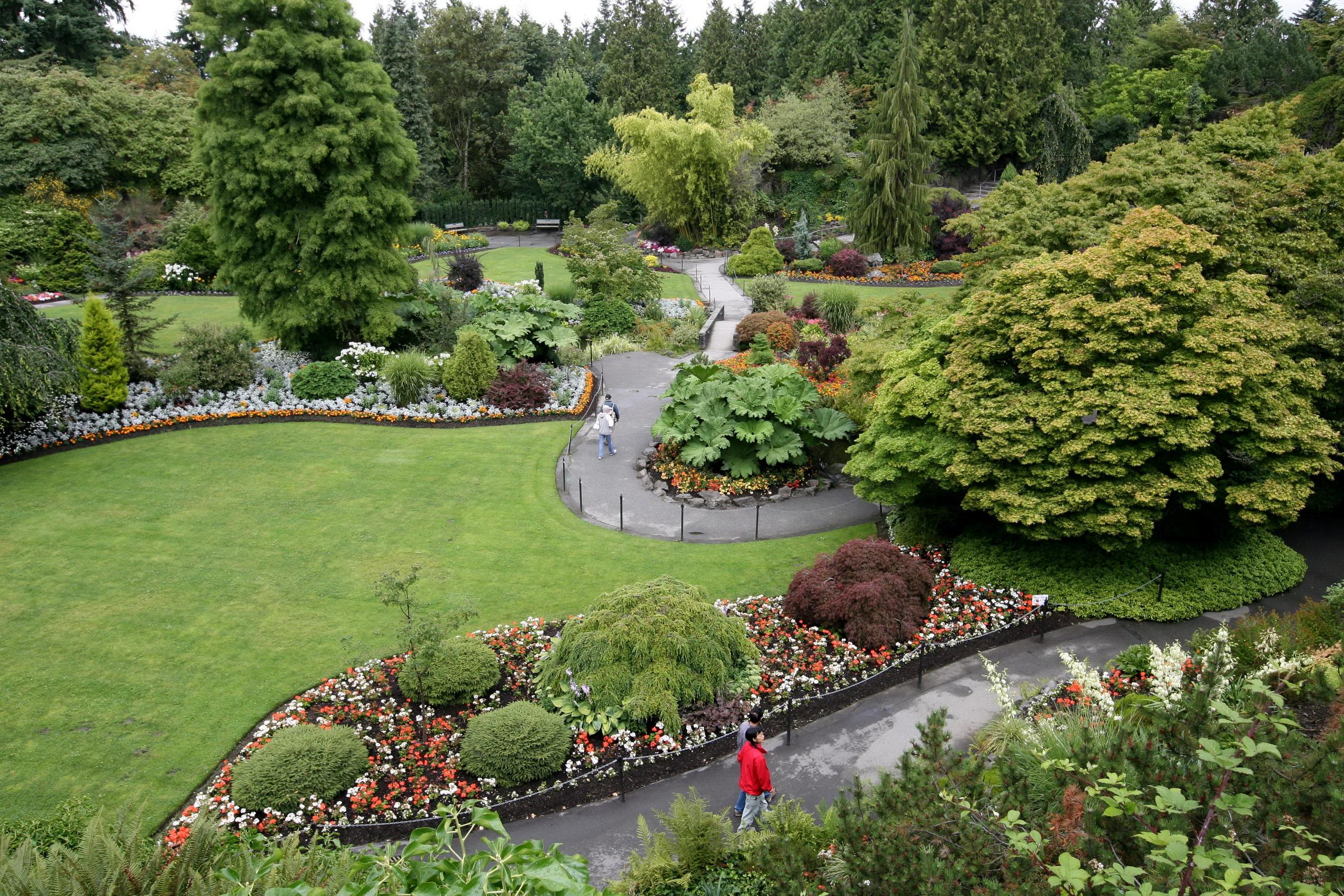 Фото цветов английских парков