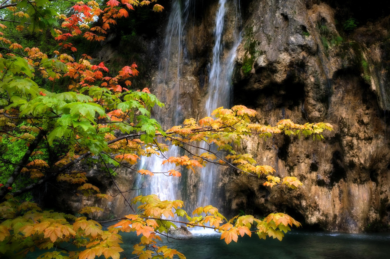 водопад деревья озеро  № 3898785 загрузить