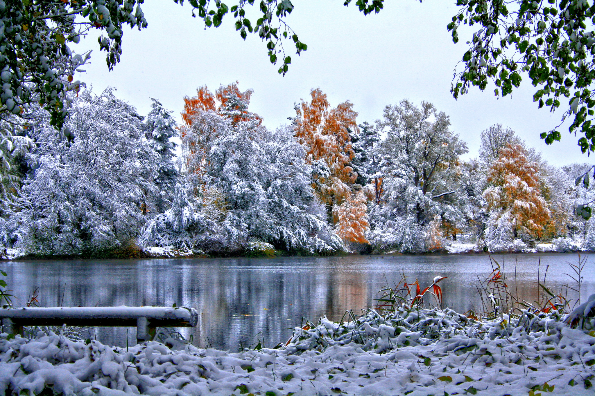 природа река зима снег без смс