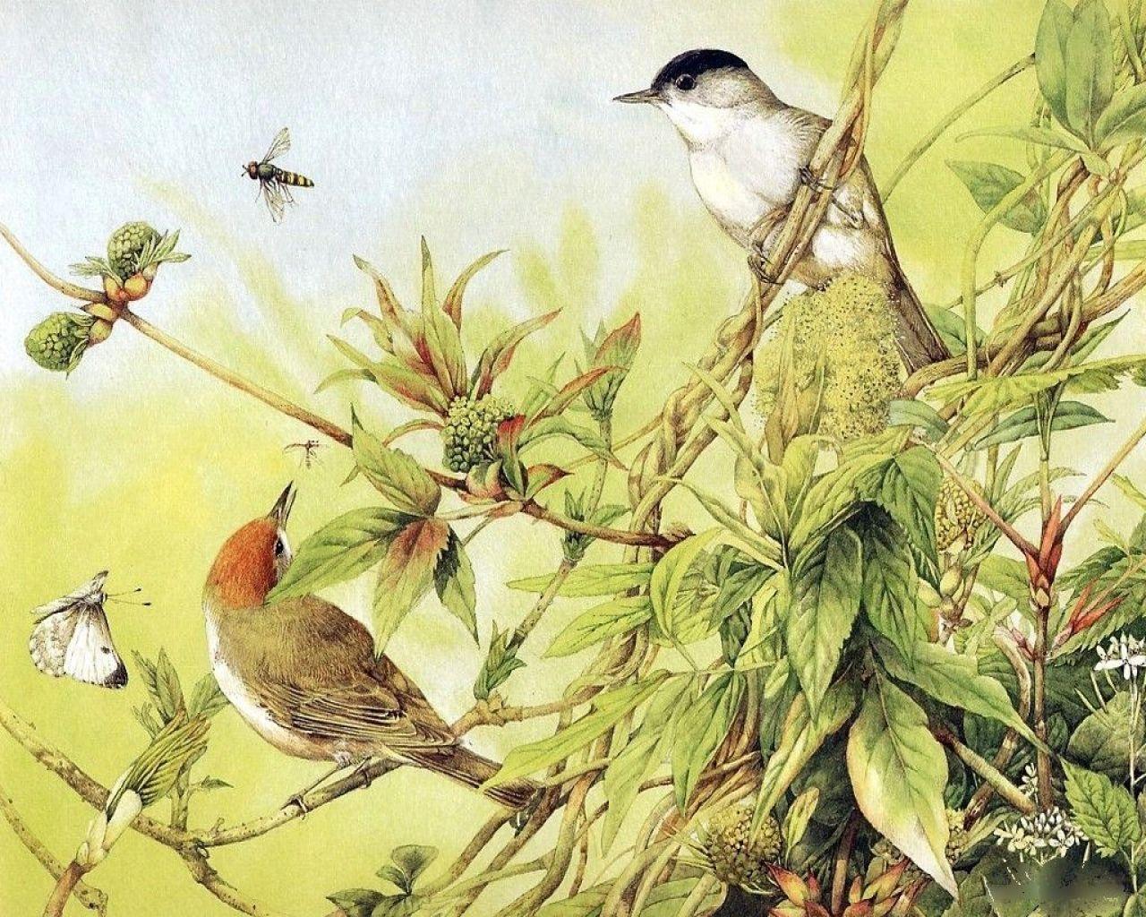 Bird pictures to paint Larry Watson T-Bird Vino Paisano - Custom Car