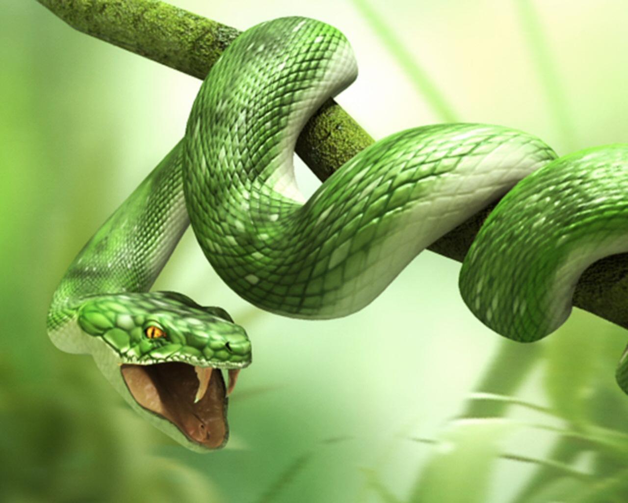 Posizione del serpente