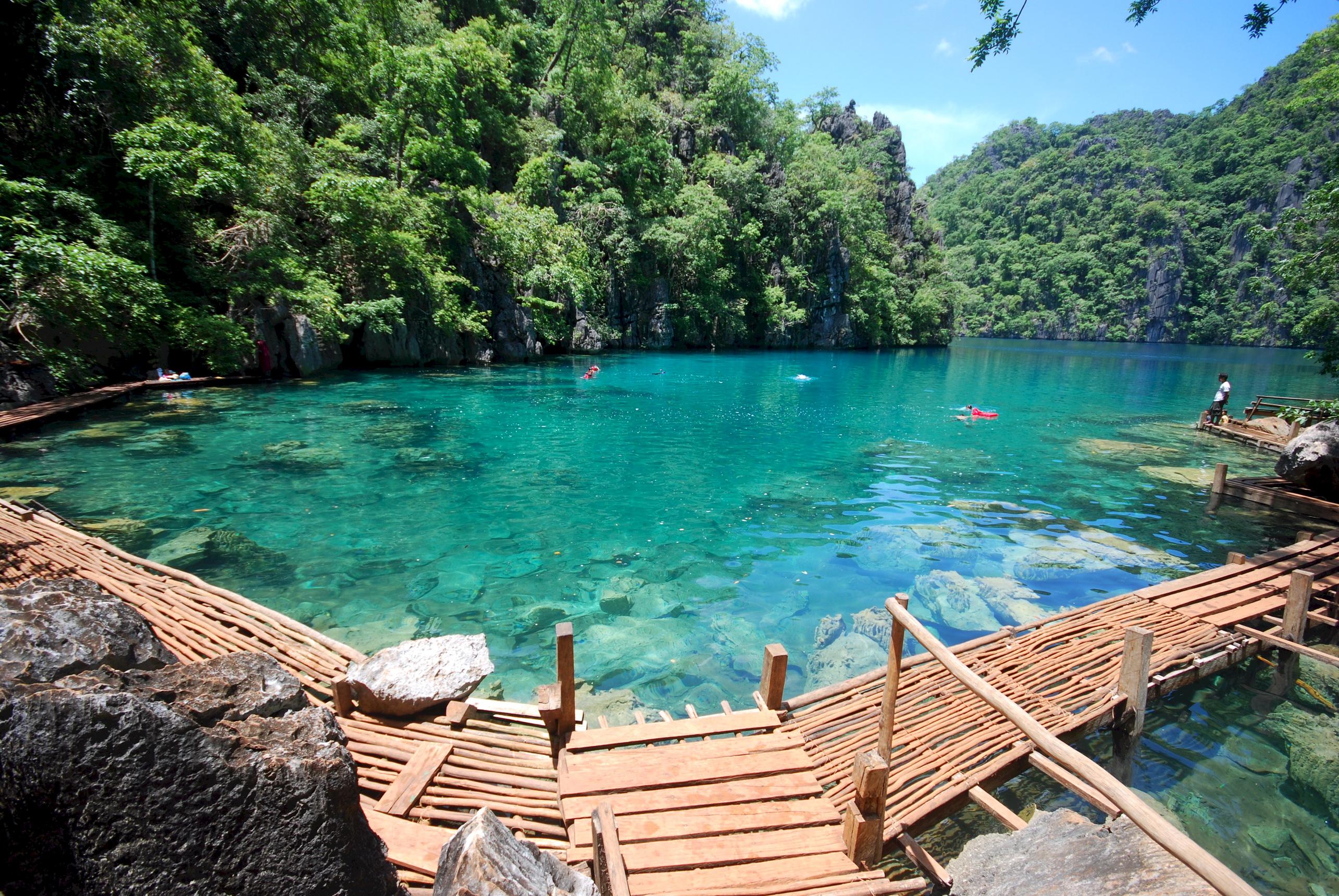 Озеро с островком бесплатно