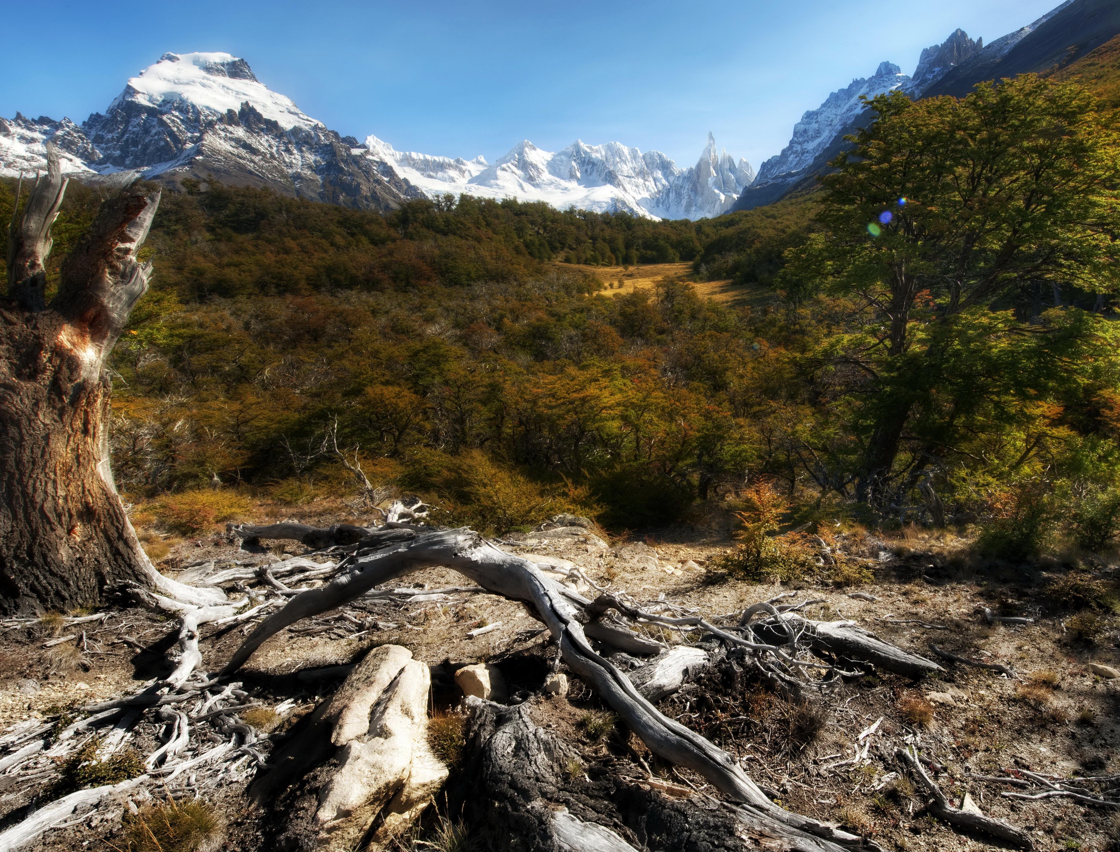 природа горы деревья скалы небо nature mountains trees rock the sky  № 379349 загрузить