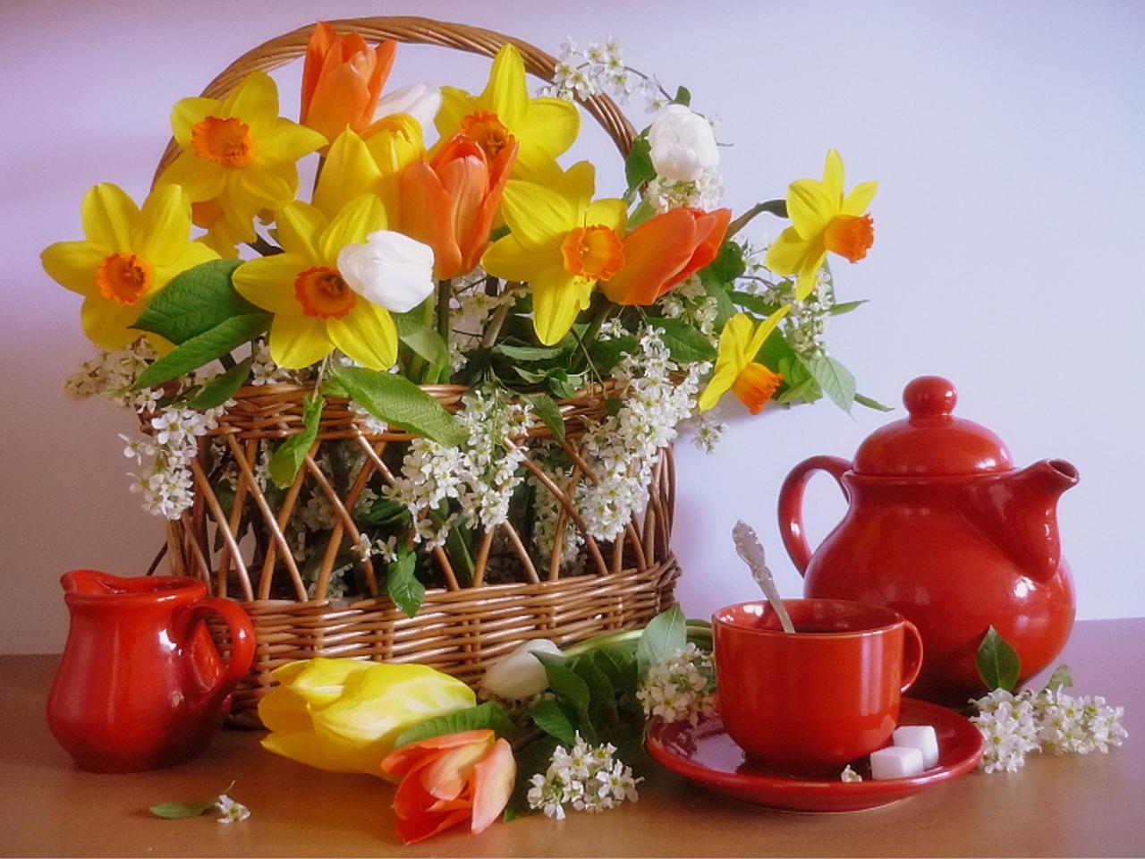 8 марта  цветы и поздравления  скачать бесплатно