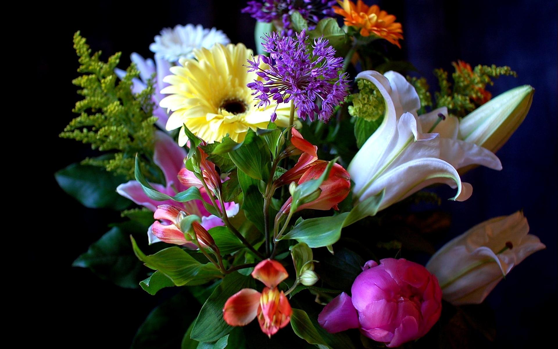 Красивые цветов в высоком