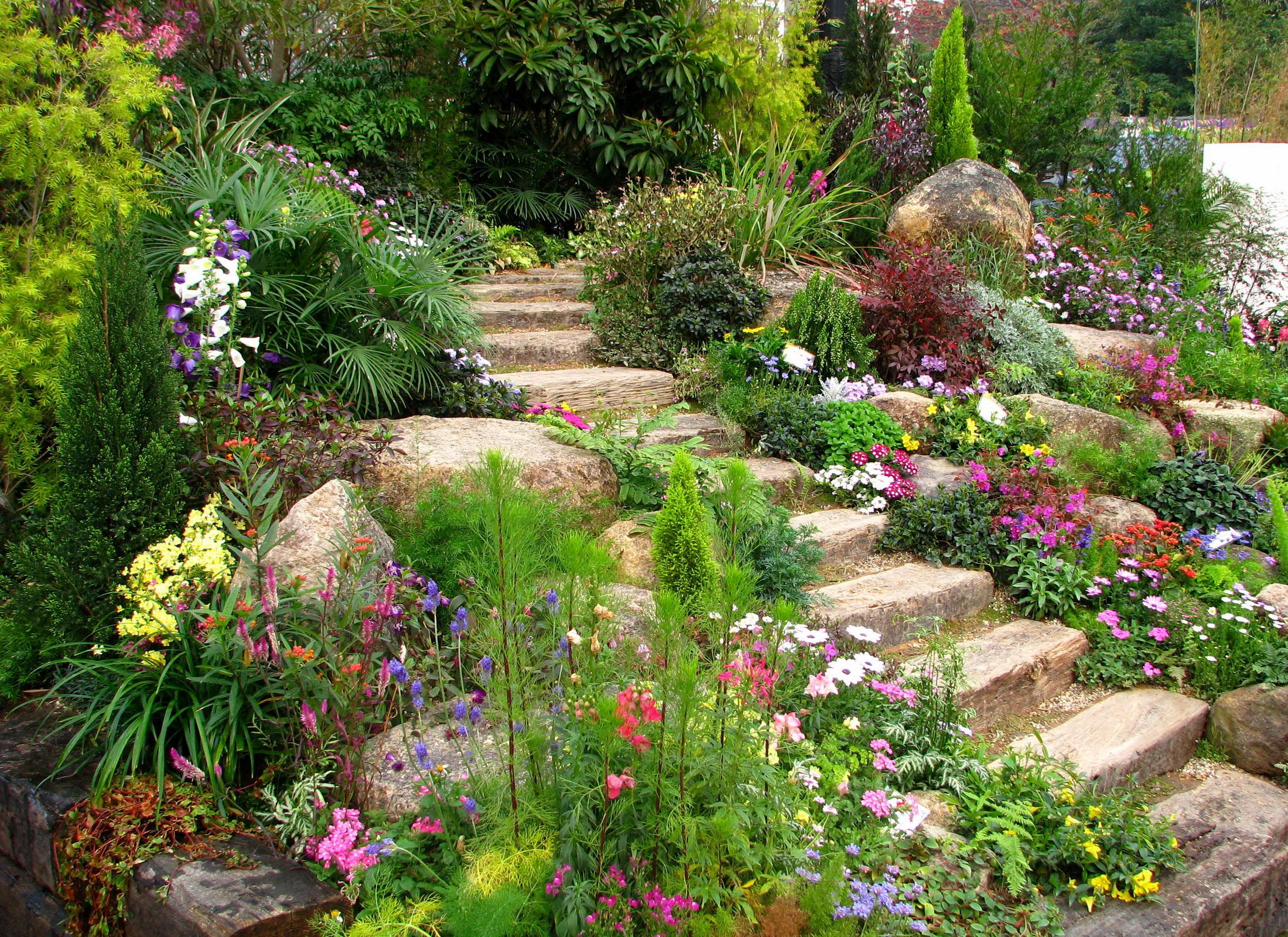 Смотреть бесплатно сады своими