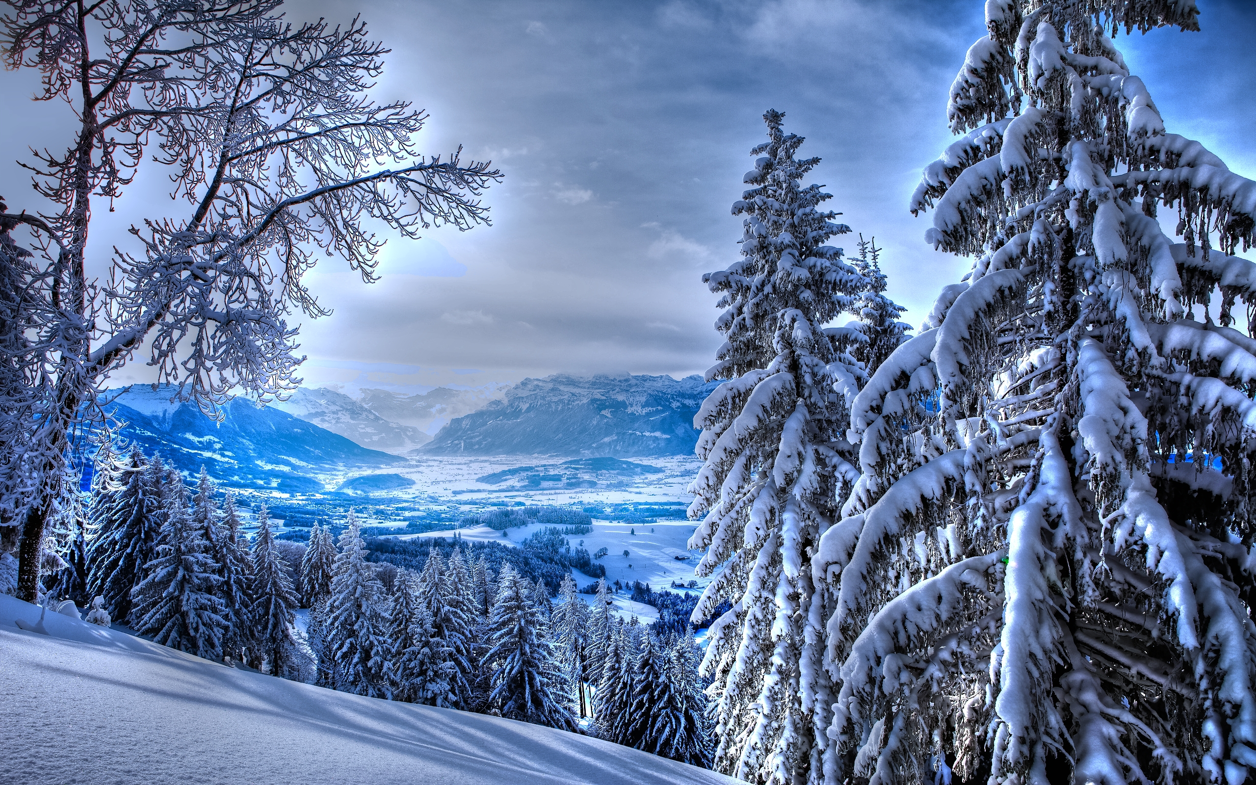 природа снег зима деревья горы  № 2577075 без смс