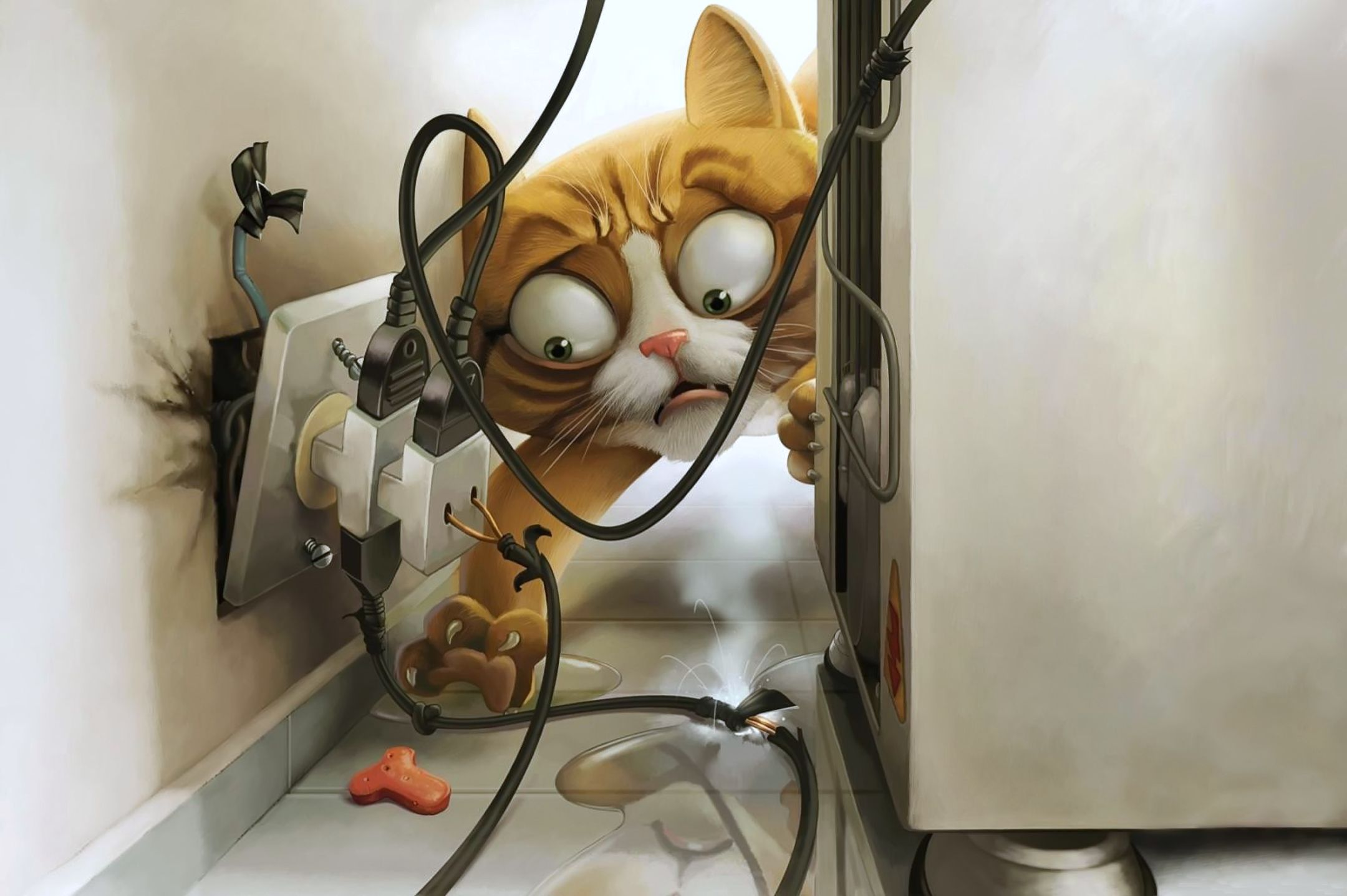 Cat en co online shop