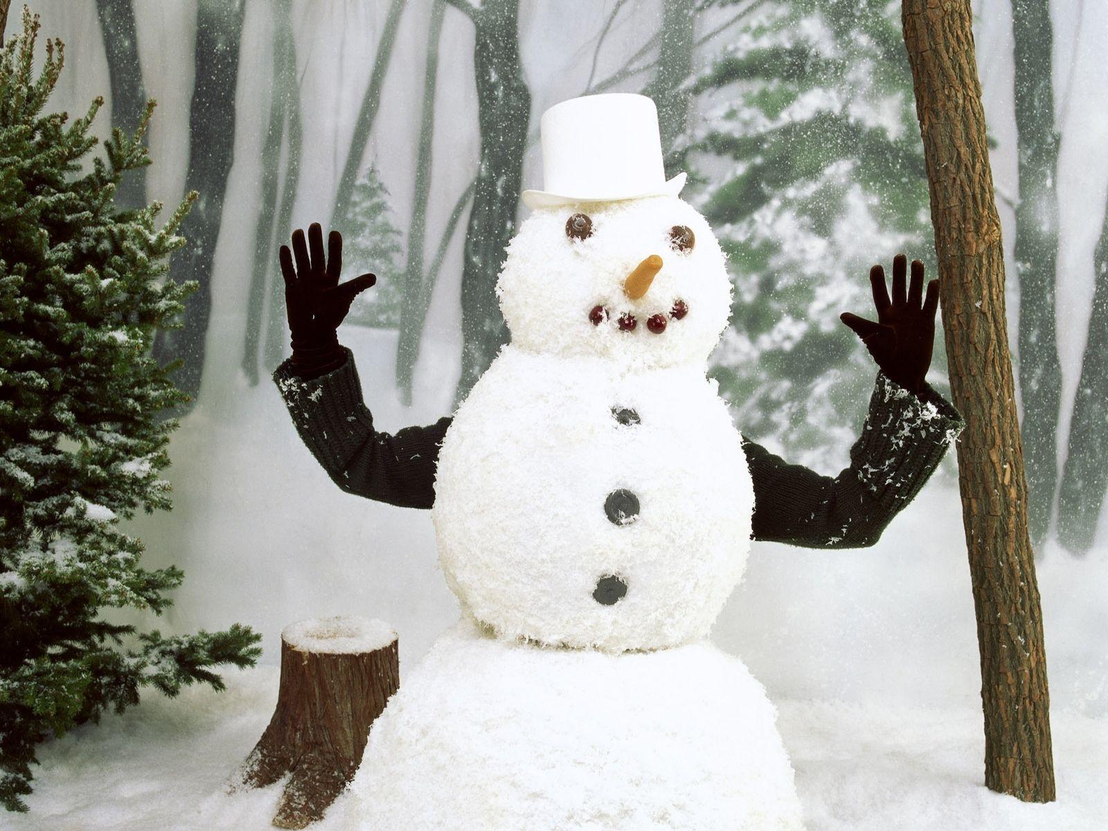 Самые красивые снеговики своими руками