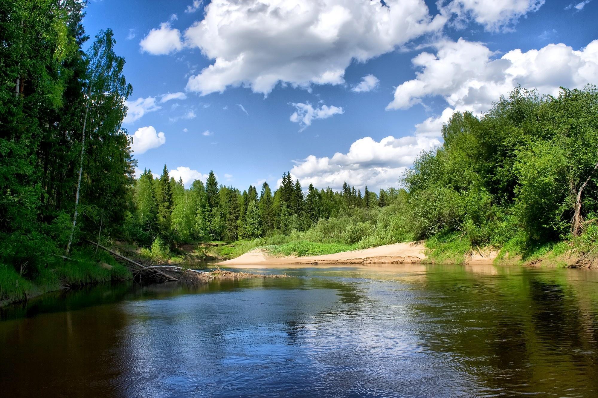река лес  № 2789206  скачать