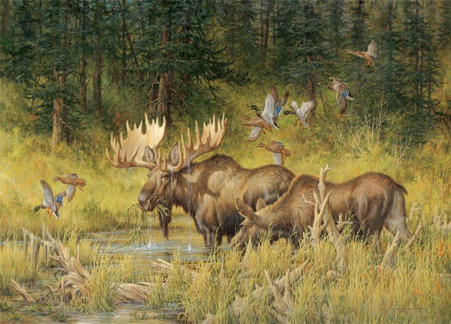 Hunter nature