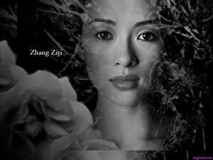 Картинка Чжан Цзыи