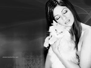 Картинка Индийские Shamita Shetty
