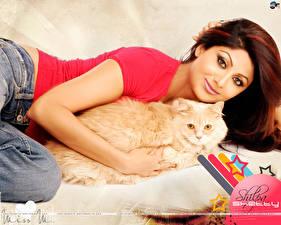 Картинки Индийские Shilpa Shetty Знаменитости