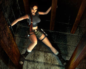 Обои Tomb Raider Tomb Raider The Angel of Darkness