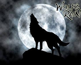 Фото Волчий дождь Волки Луны Силуэт Аниме