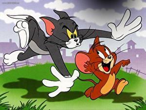 Обои Том и Джерри Мультики